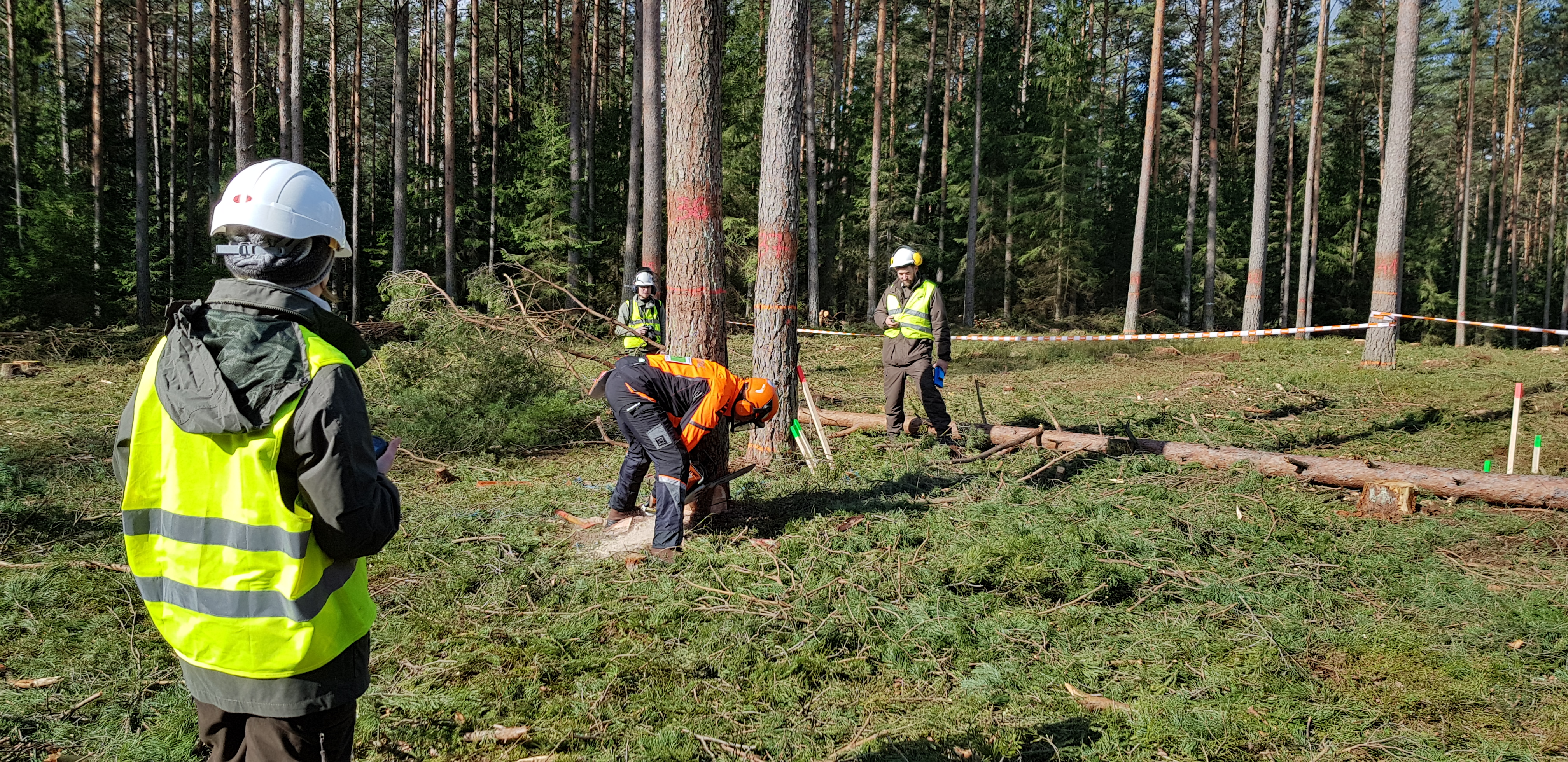 XI Konkurs Umiejętności Leśnych im. Wacława Jatczaka